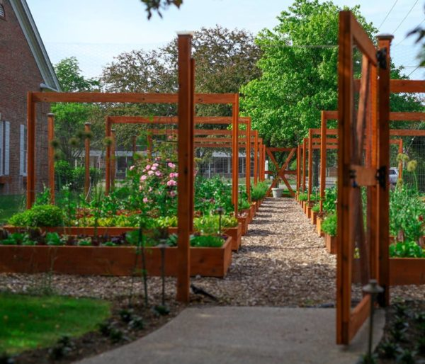 Great Lakes Culinary Center Garden