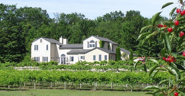 Northern Michigan wineries