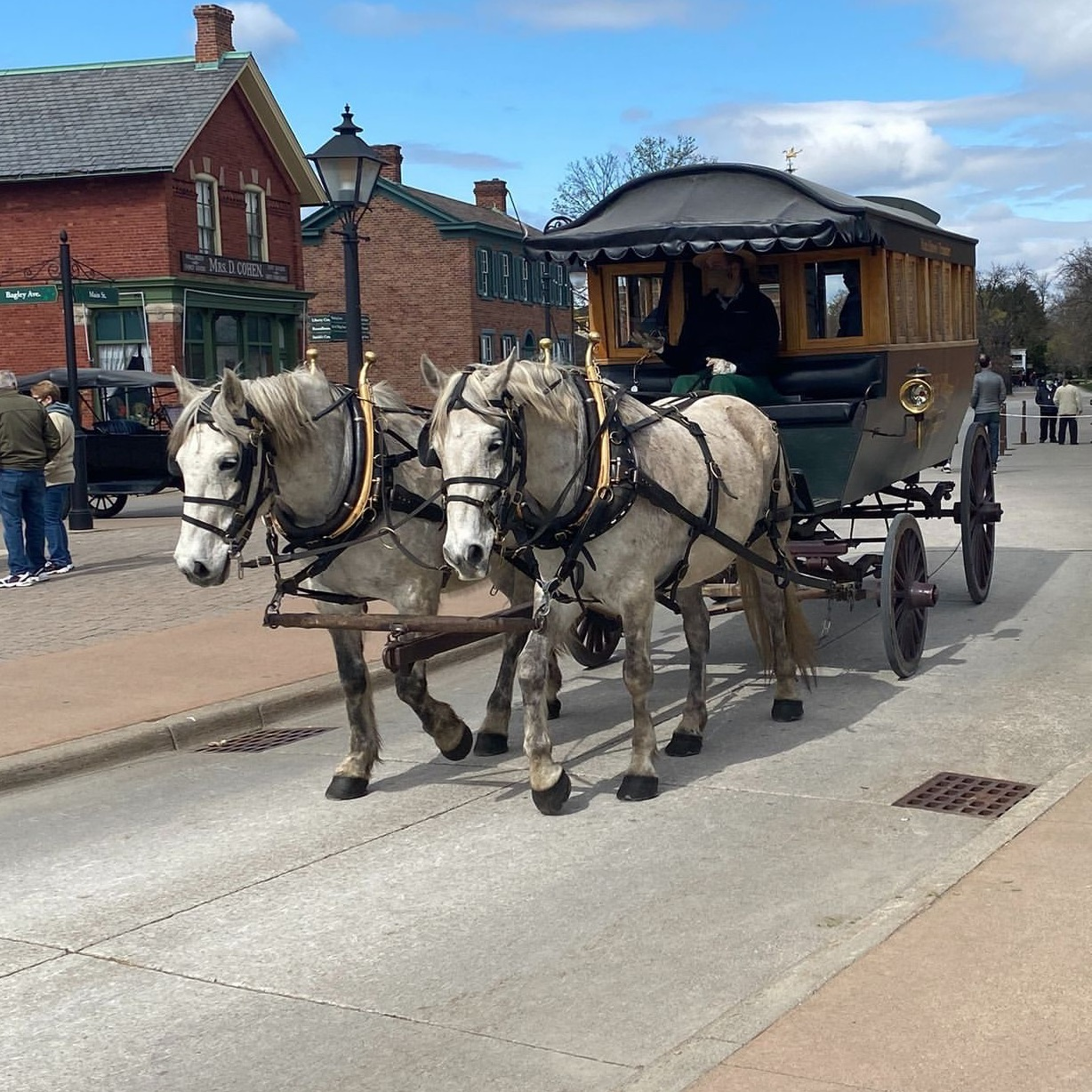 horses and buggy