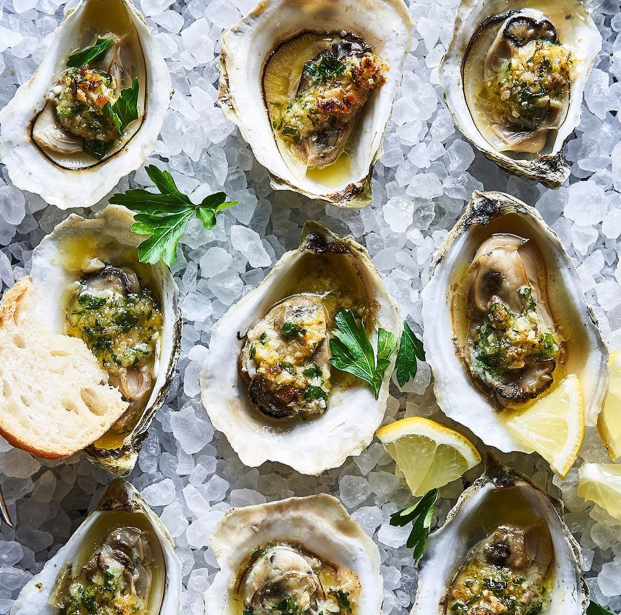 Voyager oysters