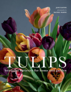 TULIPS: BEAUTIFUL VARIETIES FOR HOME AND GARDEN BOOK from Found Objects