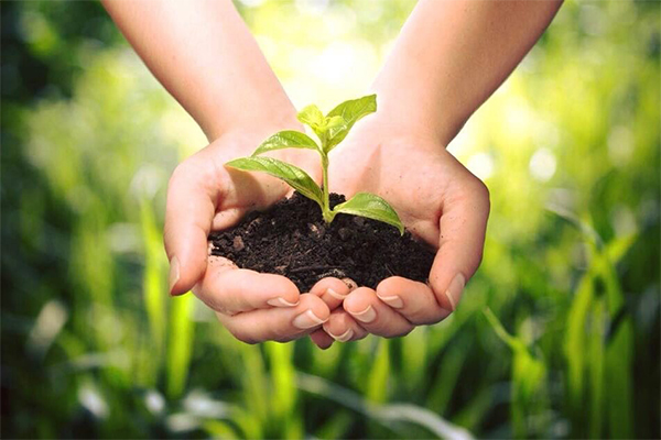 Celebrate Earth day in Metro Detroit