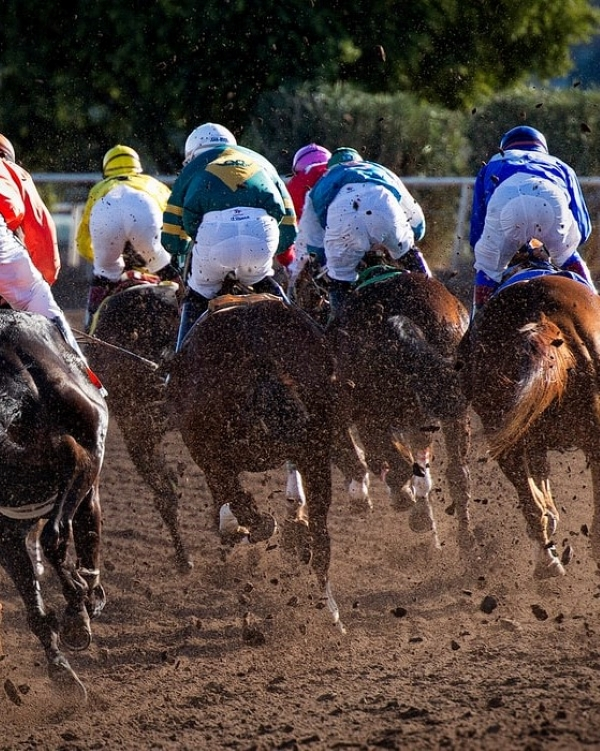 Live Horse Racing at Northville Downs