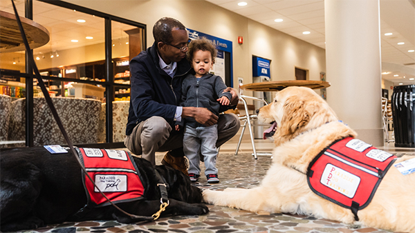 Henry Ford Hospital therapy dog program